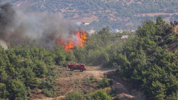 Ulaştırma Bakanlığı'na bağlı kuruluşların orman yangınlarına müdahalesi devam ediyor