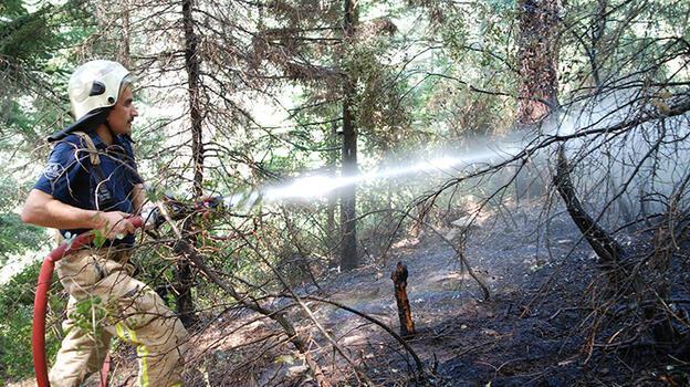Kartal'da çıkan orman yangını söndürüldü