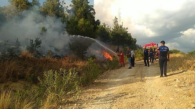 Adana'da çıkan orman yangını kontrol altına alındı