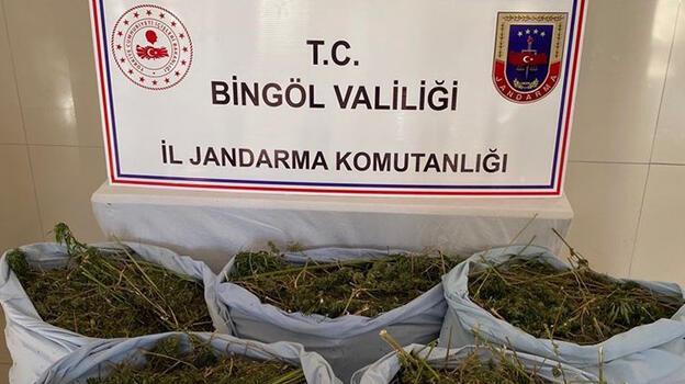 Bingöl'de 78 kilo esrar ele geçirildi