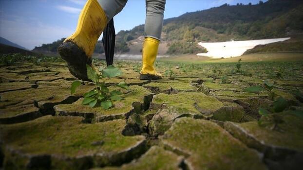 İklim kaynaklı felaketler 17 binden fazla can aldı