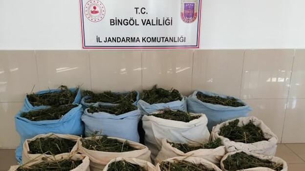 Bingöl'de 289 kilo esrar ele geçirildi