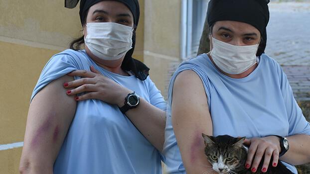 Sitede 'kayıp kedi' iddiası, tarafları mahkemelik etti