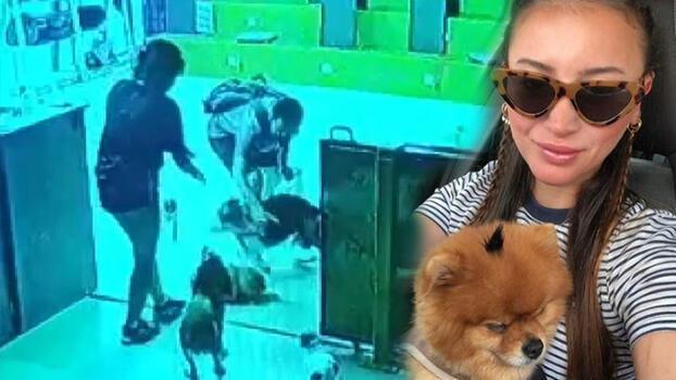 Köpek otelinde dehşet! Gözlerinin önünde öldürdü