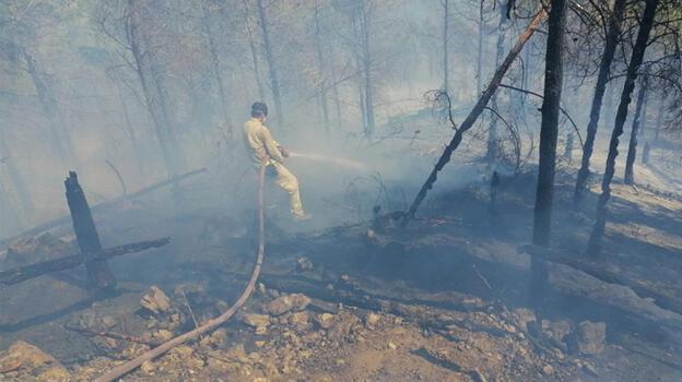 Anamur'da orman yangını; müdahale başladı