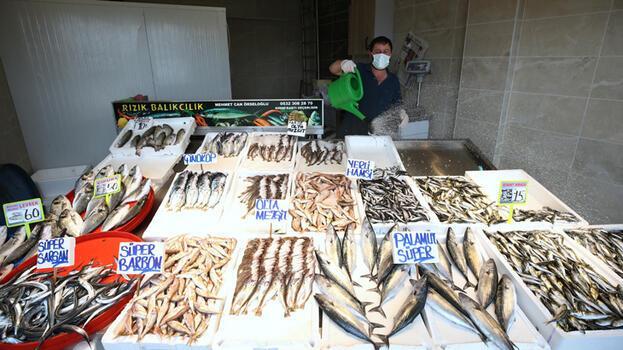 Trabzonlu balıkçılar 'fiyatların düşmesi için' deniz suyunun soğumasını bekliyor
