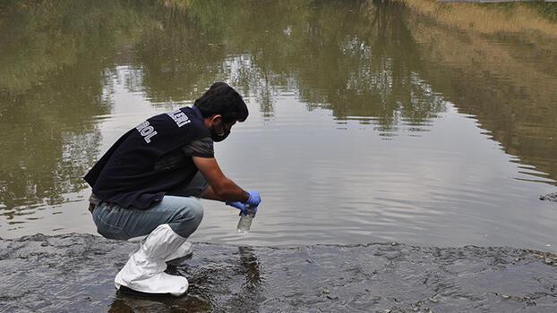 Kars Çayı'nda balık ölümlerinin nedeni belli oldu!