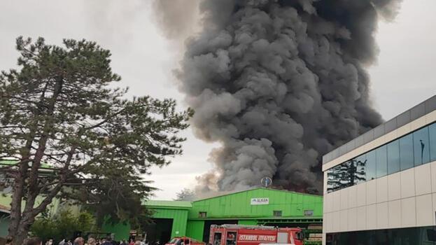 Son dakika... Şile'de fabrika yangını