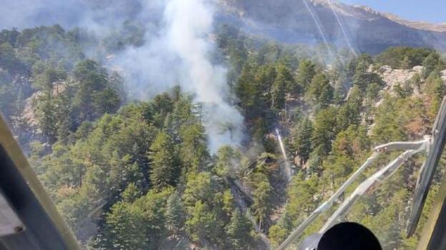 Son dakika! Manavgat'ta orman yangını