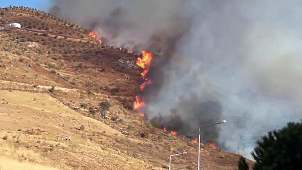 Son dakika... İzmir'de orman yangını