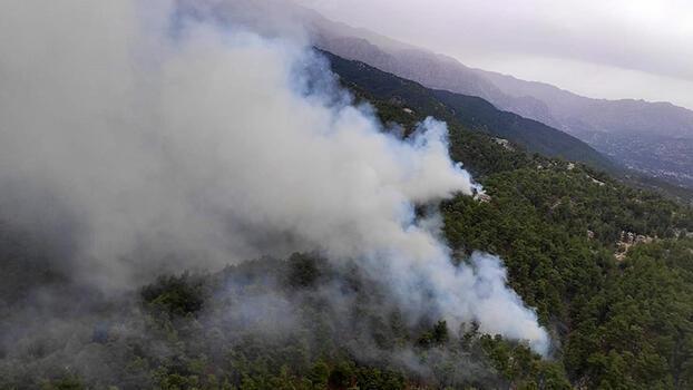 Son dakika... Manavgat'ta orman yangını! Kontrol altına alındı