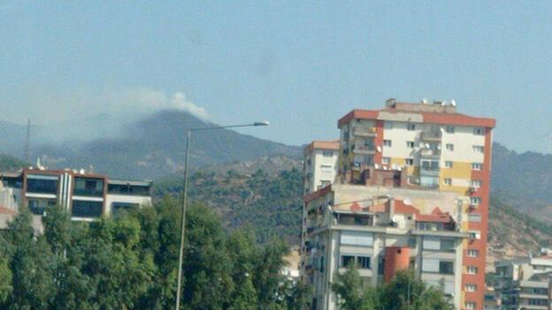 İzmir'de orman yangını! Müdahale başladı