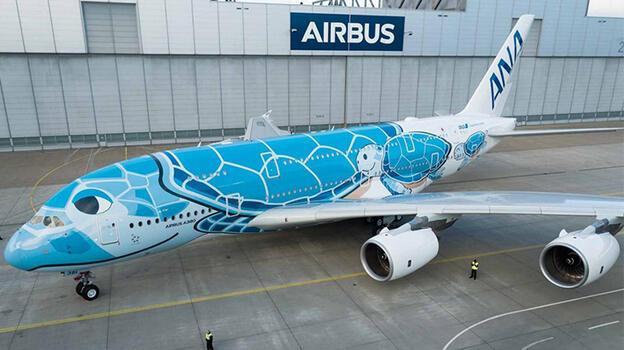 Kaplumbağa temalı uçak 'kaplumbağa sebebiyle' havalanamadı