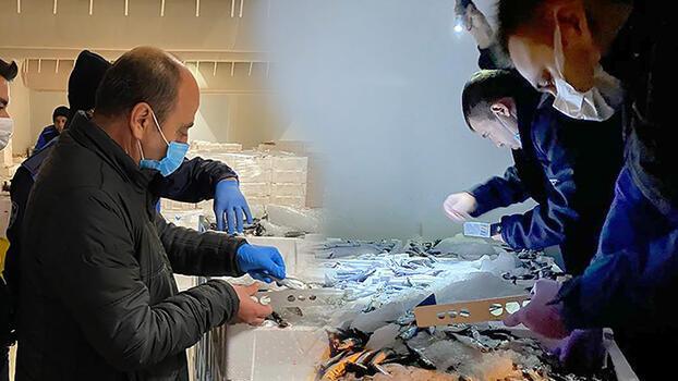 Beylikdüzü'nde 12 ton küçük boy balığa el konuldu!