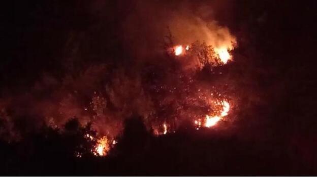 Orman yangınında kızılçam ve zeytinlik alan zarar gördü