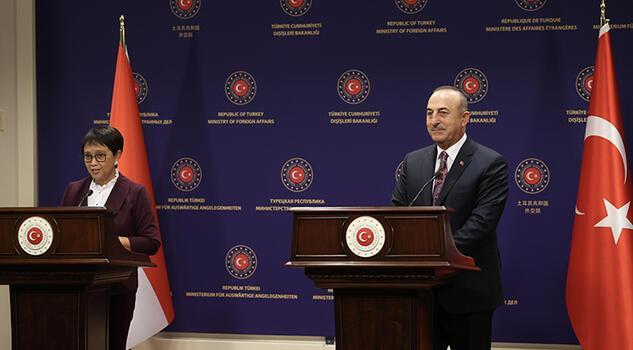 Türkiye'nin aşı sertifikası Endonezya ile karşılıklı geçerli olacak