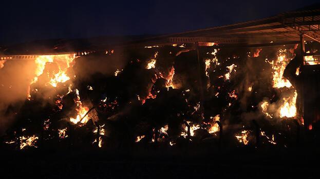 Kırklareli'de hayvan çiftliğinin deposunda korkutan yangın!