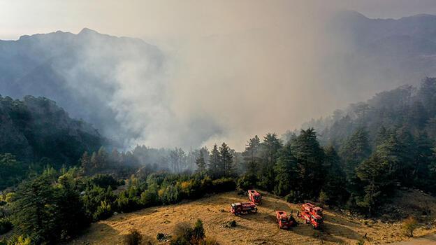 Son dakika! Kemer'de orman yangını