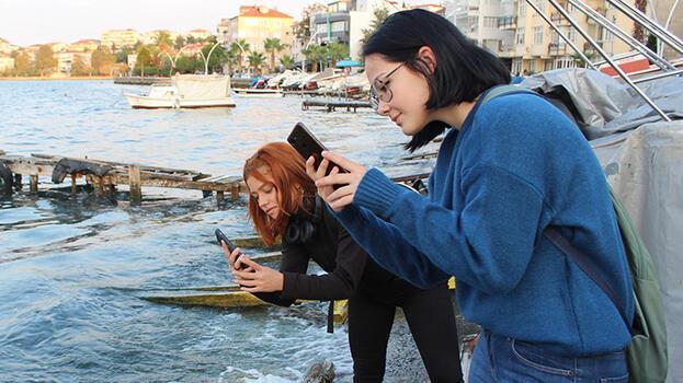 Sahil şeridinde görüntülendi! Vatandaşlar telefona sarıldı