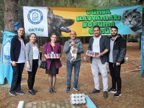 Plastik kapaklardan sokak hayvanlarına mama bağışı