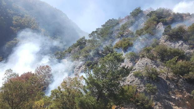 Son dakika... Osmaniye'deki orman yangını kontrol altına alındı!