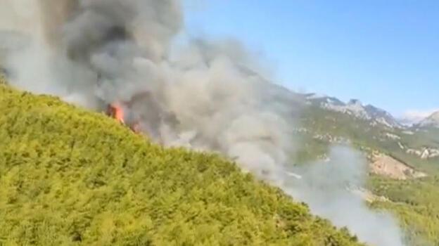 Son dakika! Antalya'da orman yangını
