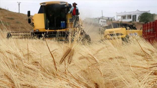 Tahıl ve sebzede bu yıl üretimin azalacağı tahmin edildi