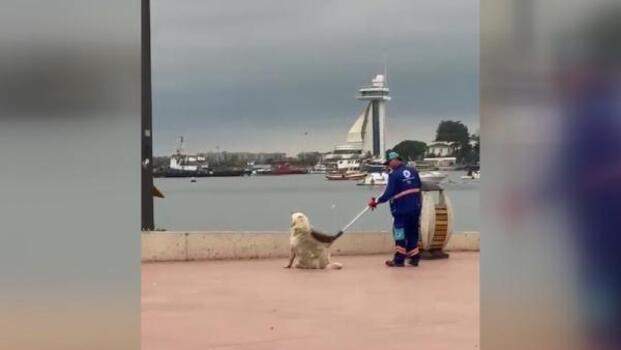 Temizlik personeli ve sokak köpeğinin yüz güldüren görüntüsü
