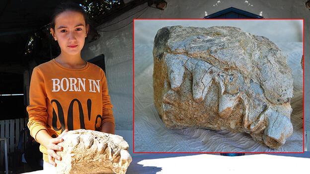 10 yaşındaki Elçin buldu, hemen korumaya alındı! Dişleri var