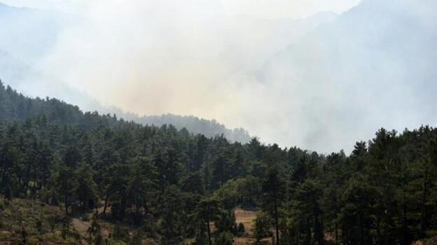 Antalya'da orman yakan 7 Rus turist tutuklandı