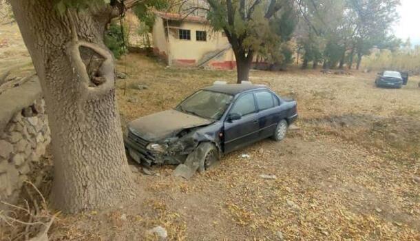 Seyir halinde kalp krizi geçiren sürücü ağaca çarparak öldü