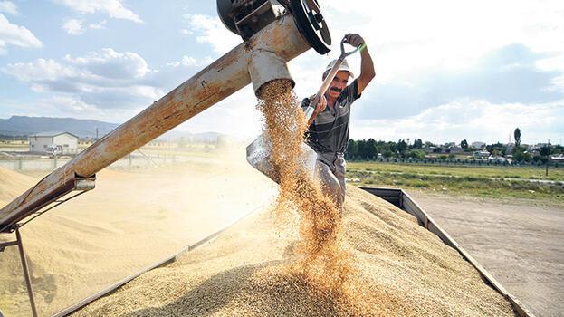 Ambarda alarm zili! Buğdaydan nohuta pek çok ürün risk altında