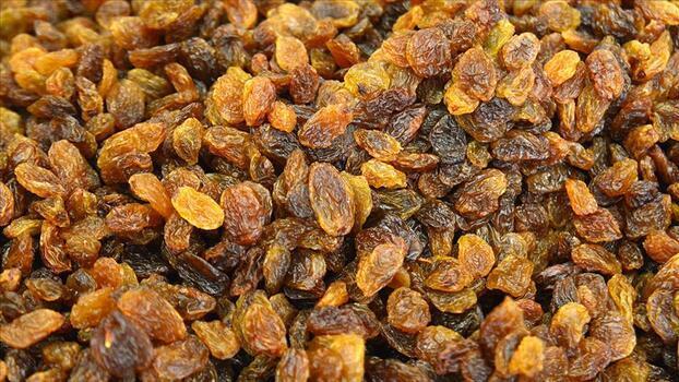 Kuru üzüm ihracatçıları e-ticaretle son tüketiciye odaklanacak