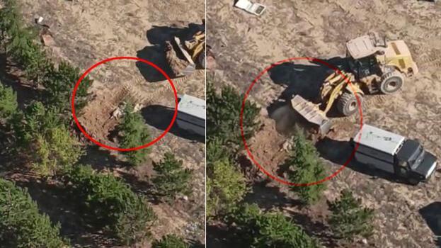 Sokak köpeklerinin uyuşturucu iğneyle vurulup gömüldüğü iddiası