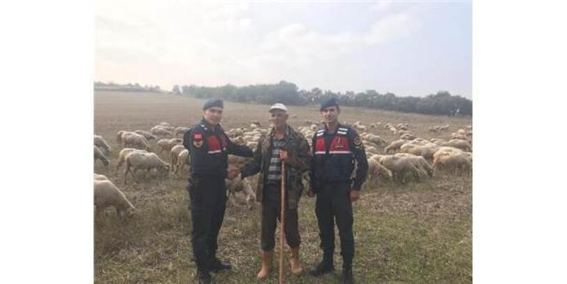Çaldığı Koyunları Satarken Suçüstü Yakalandı