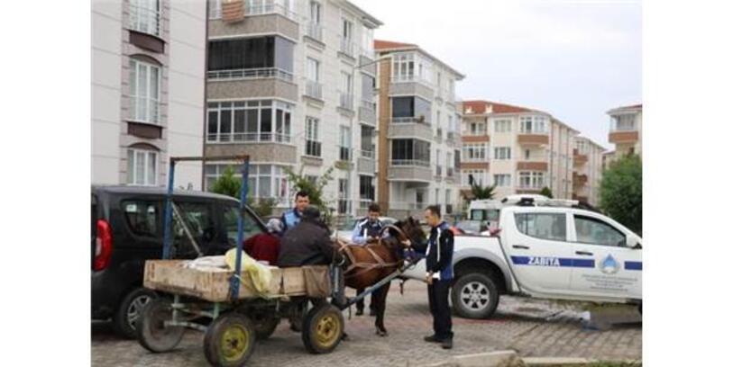 Kırklareli'de Zabıtadan At Arabası Denetimi