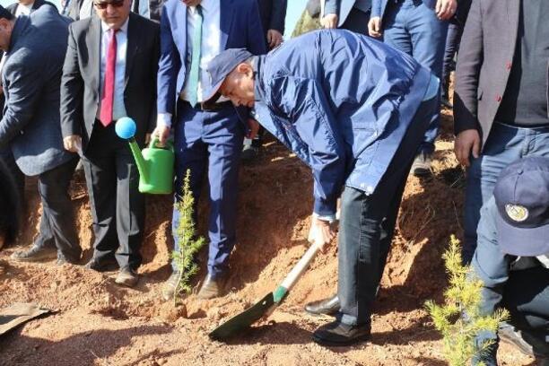 Çankırı'da 205 bin fidan toprakla buluşturuldu