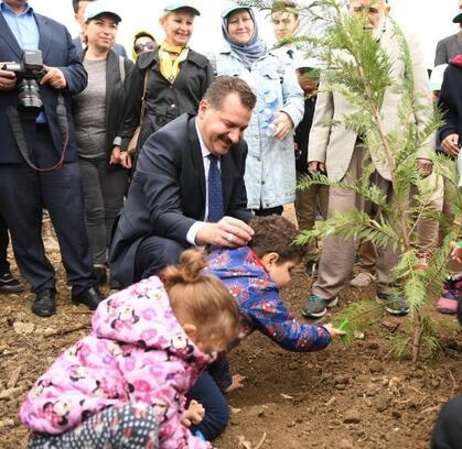 Balıkesir'de, 377 bin fidan toprakla buluşturuldu