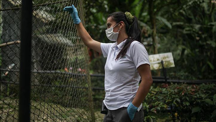Corona virüs salgını hayvanat bahçesini zora soktu