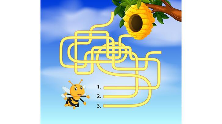 Arıcığa evini bulması için yardım eder misin?