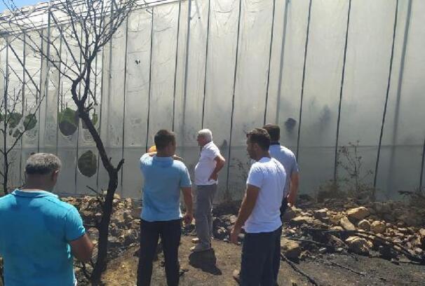 Bozyazı'da muz seraları yangında zarar gördü
