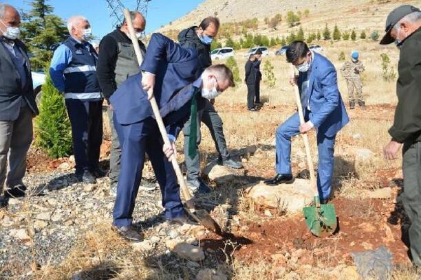 Ergani'de bin fidan toprakla buluşturuldu