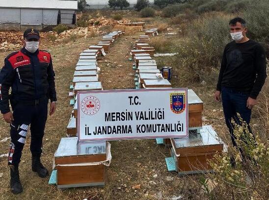Erdemli'de arı kovanı hırsızları yakalandı