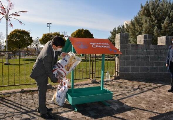 Ergani'de sokak hayvanlarına mama ve su