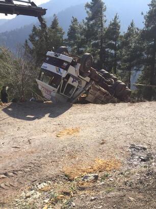 Tomruk çeken kamyon şarampole yuvarladı