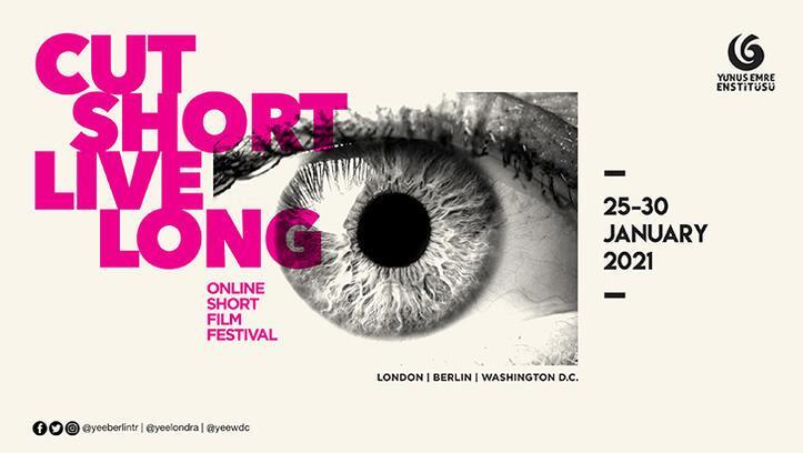 Yunus Emre Enstitüsü'nden Londra, Berlin ve Washington'da festival