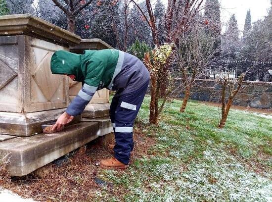 Beyoğlu'nda kar yağışından etkilenen sokak hayvanları unutulmadı