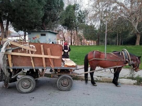 Salihli'de at arabaları trafikten menedildi