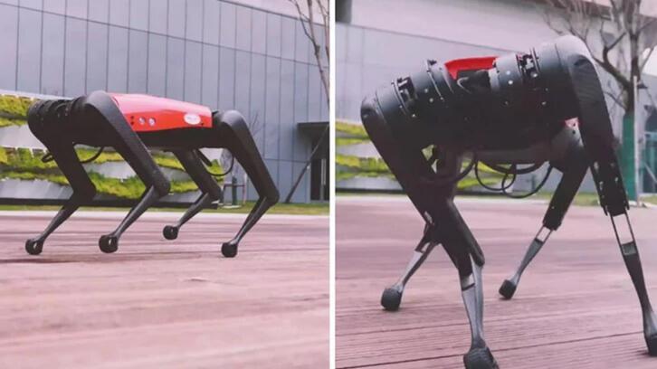 Boston Dynamics'e Çin'den büyük rakip: AlphaDog geldi!