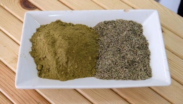 'Kimyon, bayat yemeklerde zararlı bakterilerin kalkanı'